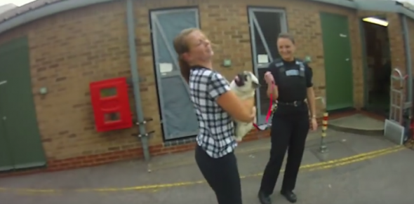 Stolen Dog Bursts with Excitement When Reunited with Owner