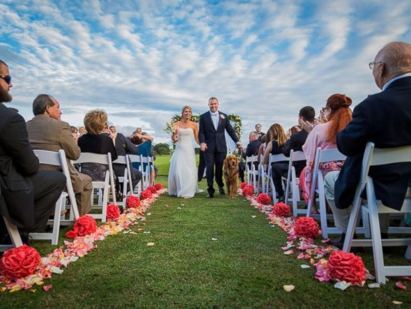Service Dog Stands as Best Man in Owner's Wedding Day