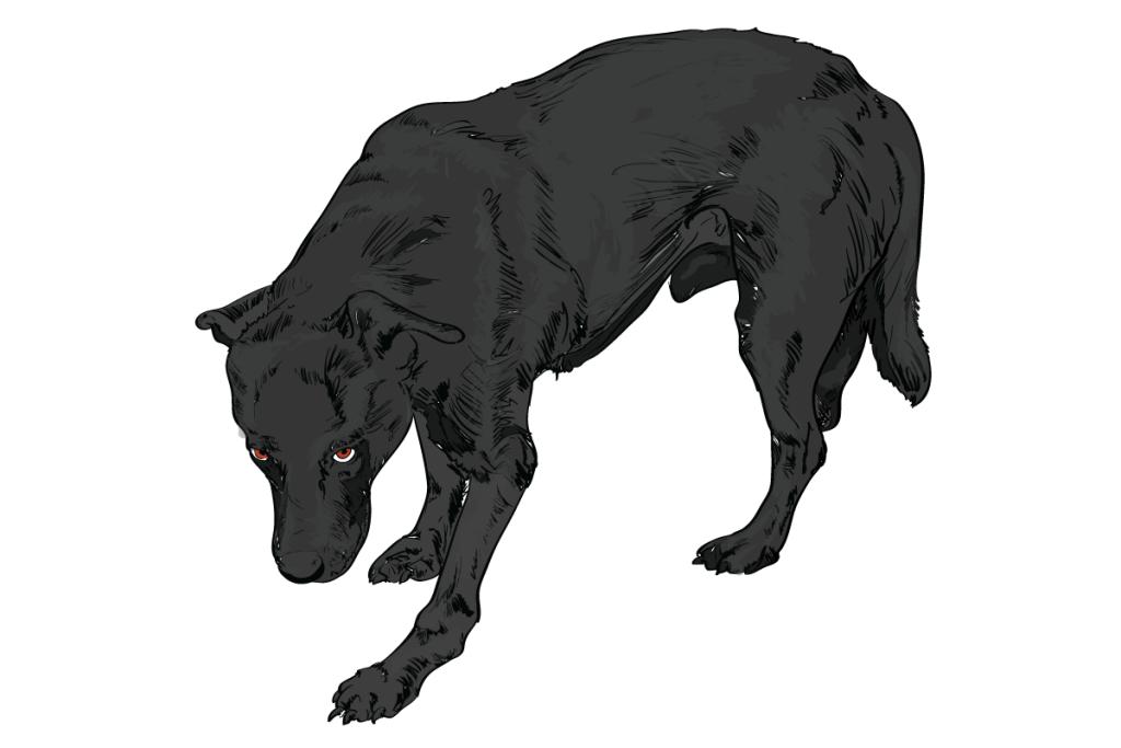 02-Dog-Body-Language