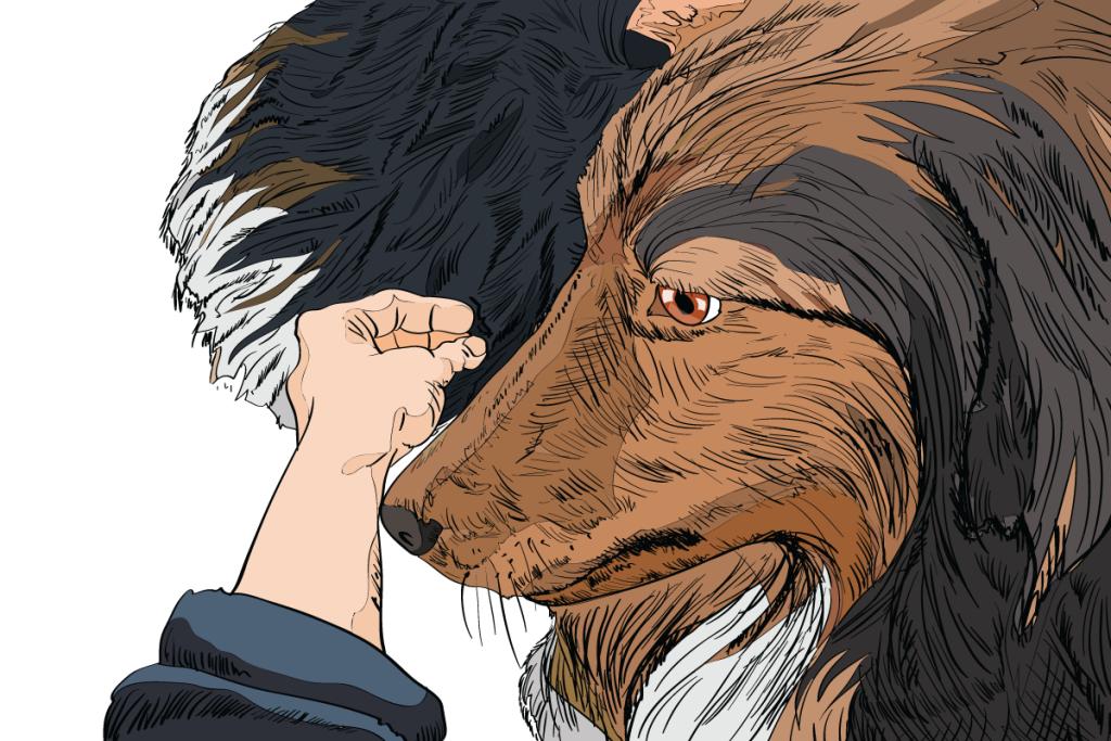 05-Dog-Body-Language