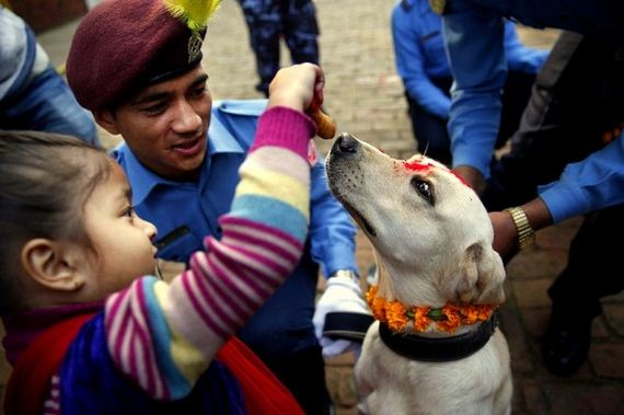 07-Kukur-Tihar-Festival-in-Nepa