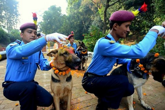 09-Kukur-Tihar-Festival-in-Nepa