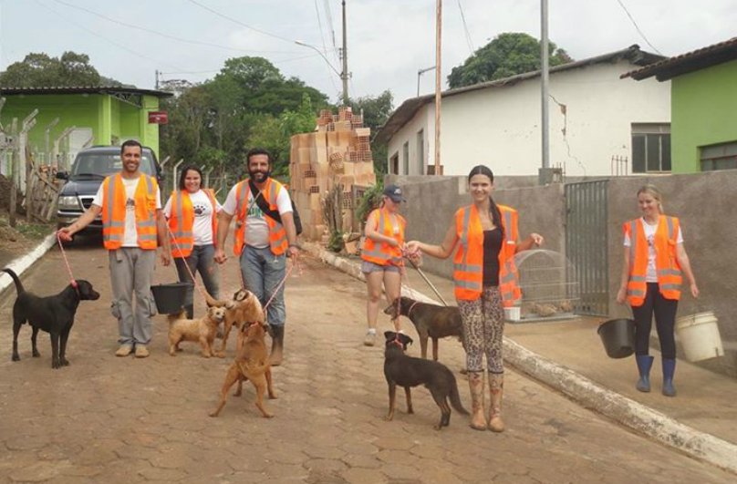 What These Rescuers Did For These Dogs, Unbelievably Heartwarming