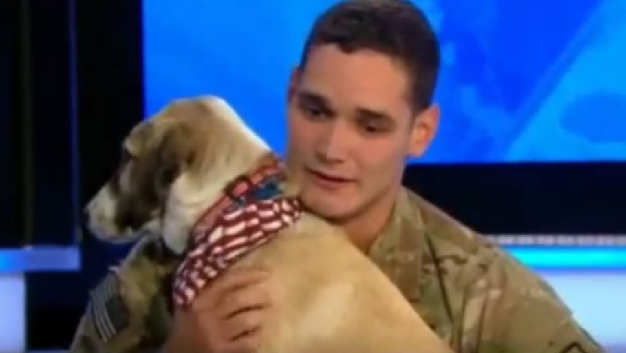 These Soldiers Found 8 Dogs In Afghanistan. Now Watch What They Do To Bring Their Dogs HOME!