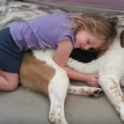 Deaf Child Communicates with Dog using Sign Language