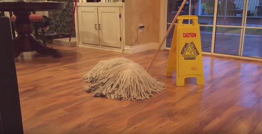 This Might Look Like An Ordinary Mop…But Wait Until There's A Knock At The Door