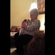 Grandma's priceless reaction to Christmas puppy