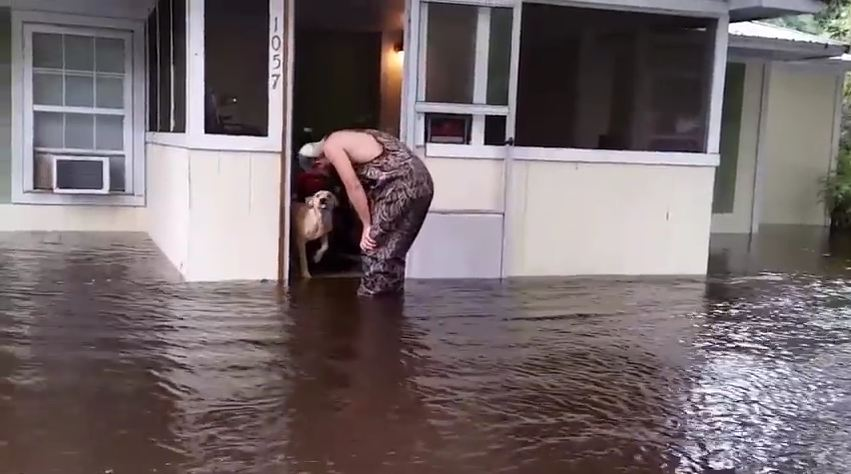 Dog Abandoned In Rising Flood Water Gets Rescued By Kind Strangers Passing By
