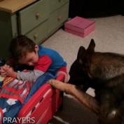 When It's Time To Get Ready For Bed, This German Shepherd Is Here To Help