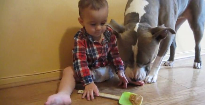 Baby gives dog peanut butter