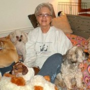 Woman Opens Retirement Home for Senior Dogs
