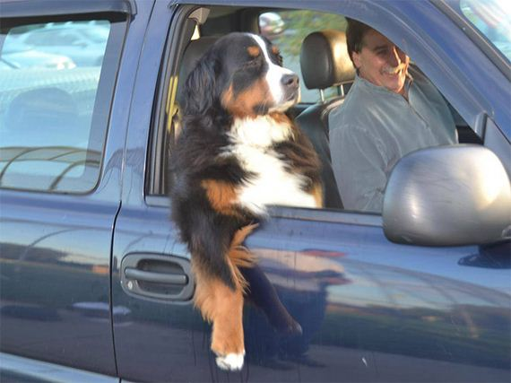 05-car-ride