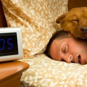 14 Pros and Cons to Letting Your Dogs Sleep in Bed with You