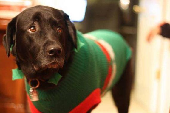 11-christmas-sweaters