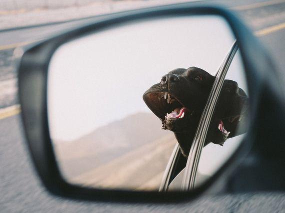 13-car-ride