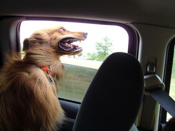 16-car-ride