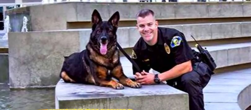 A Police Dog Shot In The Line of Duty Reunites With His Human Partner