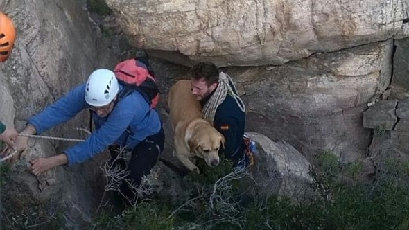 Dog and Owner Go on Christmas Walk and Need Emergency Rescue