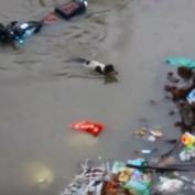 She Heard Her Baby Crying In The Middle Of A Raging Flood And Stopped At Nothing To Save Her