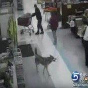 When This Dog Needed A Last-Minute Christmas Gift, He Was Bad To The Bone