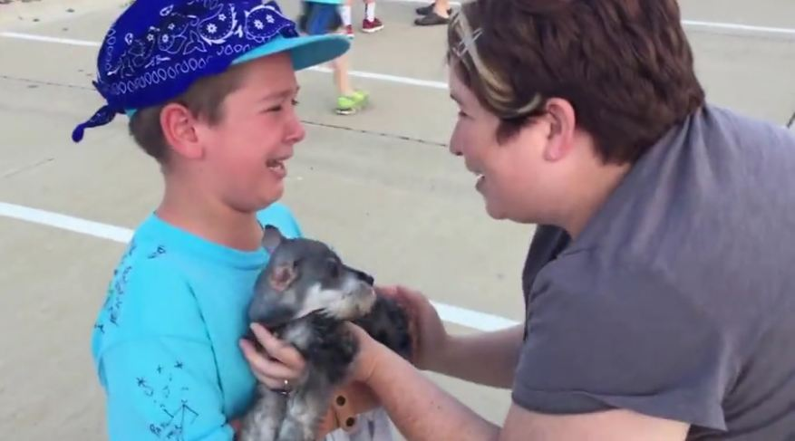 Little boy's reaction to his puppy surprise will melt your heart