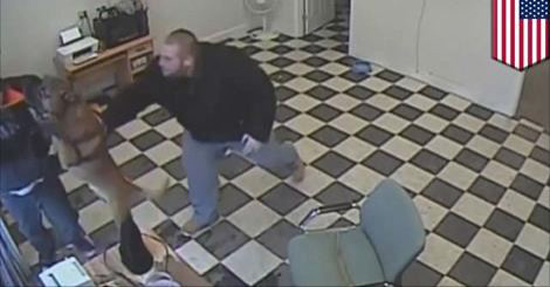 Pit Bull Saves His Owner From A Robber!