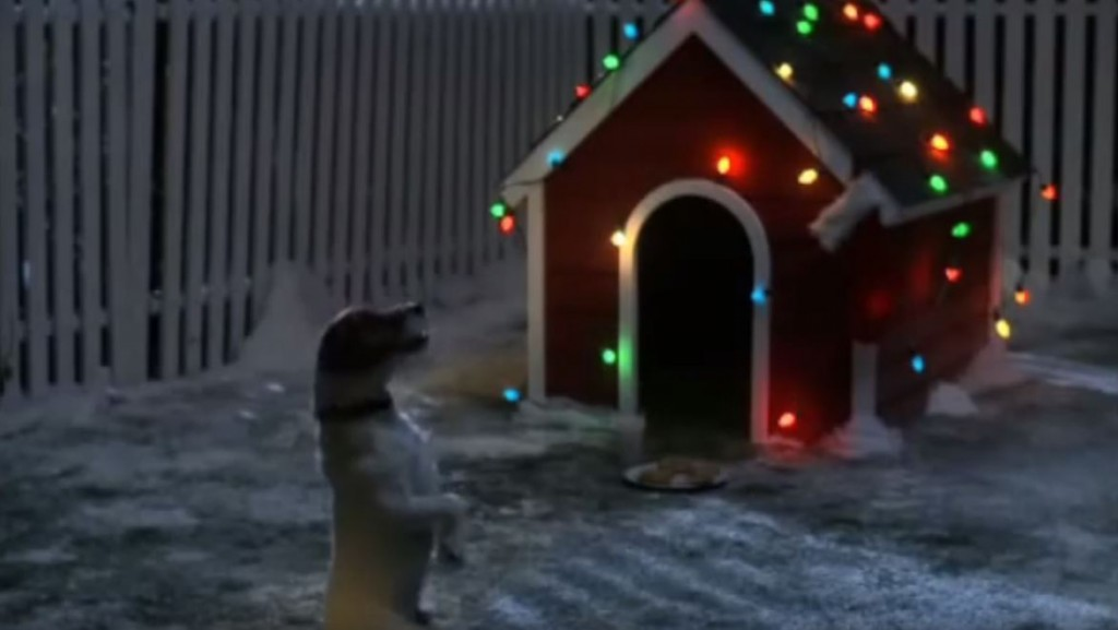 Cute Dog Patiently Waits For Santa Claus To Visit His Dog House