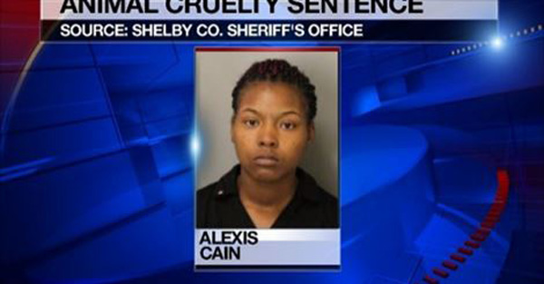 Woman Gets 2 Years in Jail for Hot Car Death of Dog