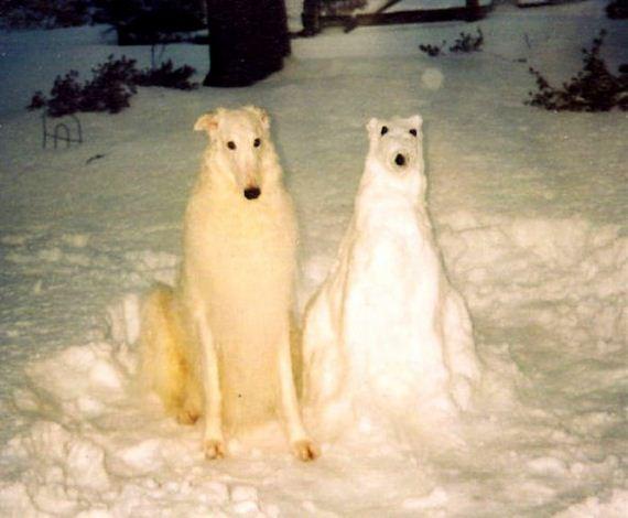 03-dogs-art