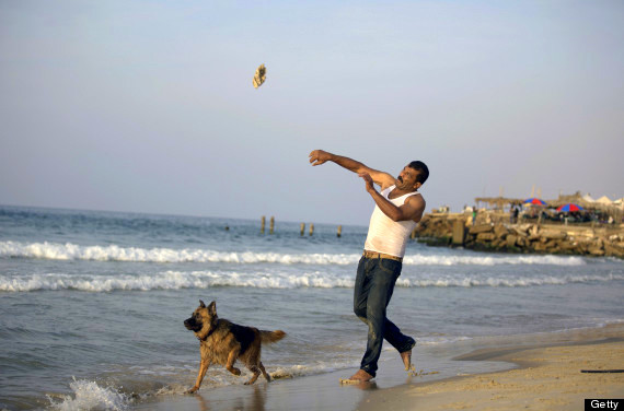 Hassan Kasskin, a 44-year-old Palestinian, teaches his dog how to rescue people shipwrecked at sea at the beach in Gaza City, on November 6, 2013. AFP PHOTO/MOHAMMED ABED        (Photo credit should read MOHAMMED ABED/AFP/Getty Images)