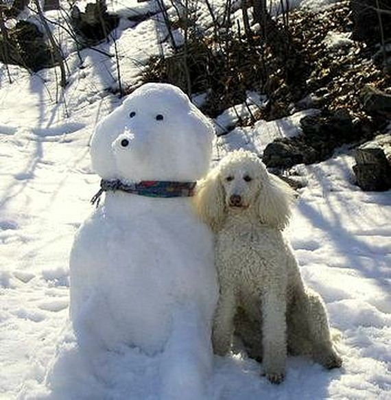 13-dogs-art
