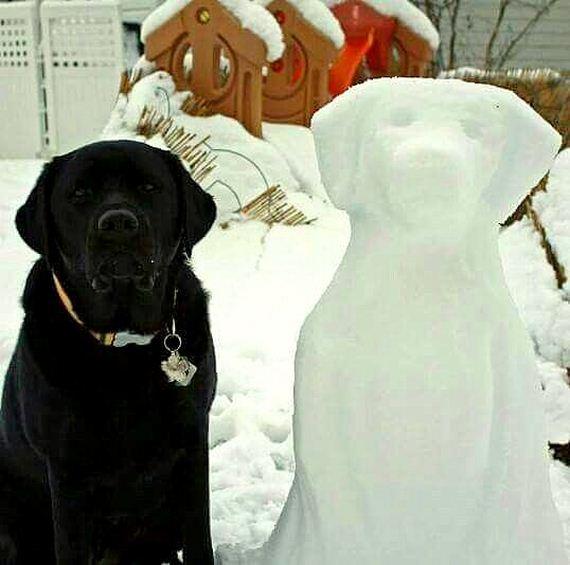 22-dogs-art