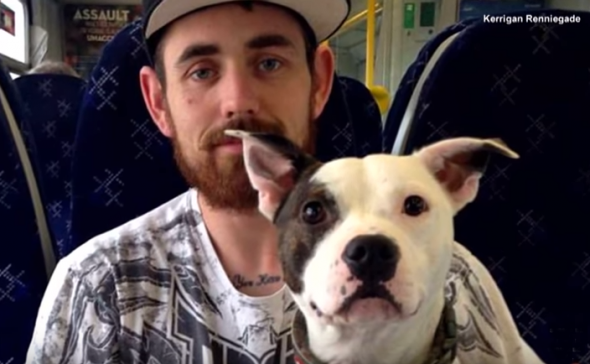 Dog Spends Week Away from Owner and Loses It When They're Reunited