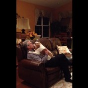 Excited dog loves to welcome owner home