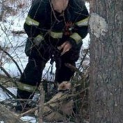 Dog Leads Rescuers to His Injured and Trapped Dog Sister