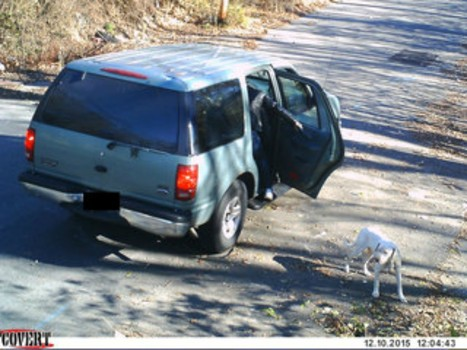 Officer Sees Footage Of Man Dumping Dog, 30 Minutes Later Something Wonderful Happens