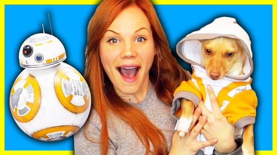 Dog Tries On Star Wars Costumes