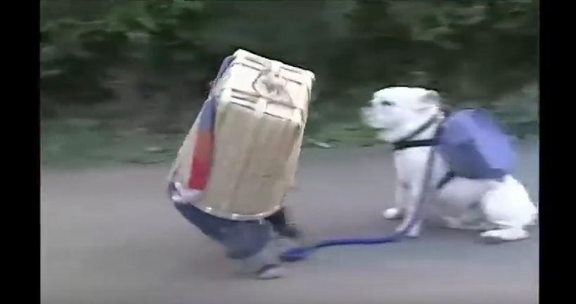 Funny Dog and Monkey…