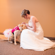 Photo of Therapy Dog Calming Bride Before Wedding Goes Viral