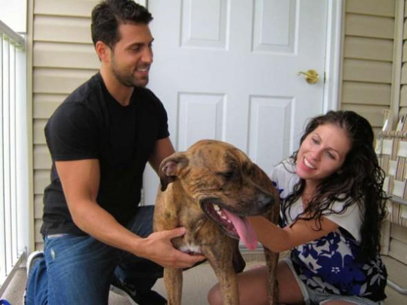 Community Helps Lost Dog Get Back Home