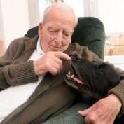 Senior Home Oldest Four-Legged Resident Dies