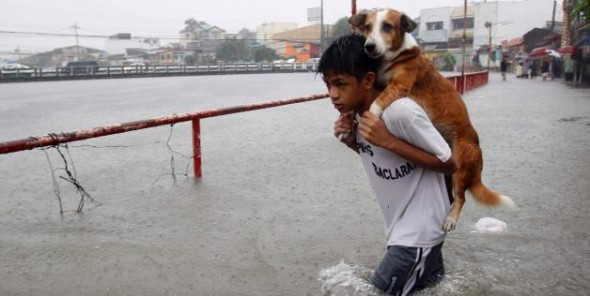 Boy Carries Dog through Flood Waters