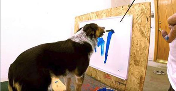 A Dog That Knows His Name So Well He Can Paint It!