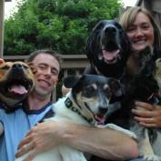 Dog Set For Euthanasia Becomes International Celeb Instead