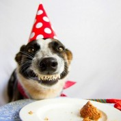 Happy Birthday… or Not