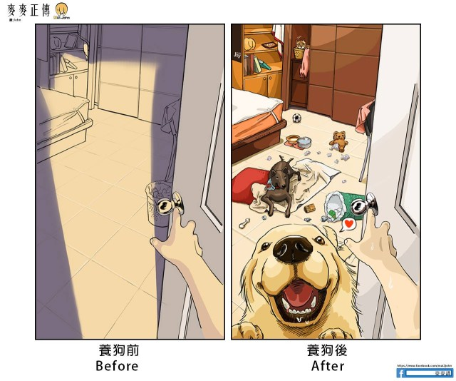 02-dogs