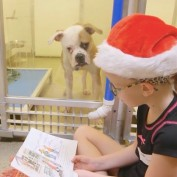These Kids Read To Shelter Dogs And The Benefits Are Amazing!