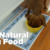 How To Make Your Own All-Natural Dog Food In A Crock-Pot