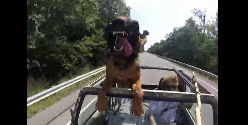 Dog Takes A Car Ride