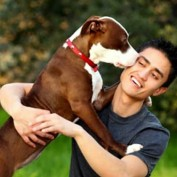 """Study """"Proves"""" That Happiness is a Warm Pup"""